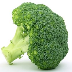 [cml_media_alt id='126']broccoli[/cml_media_alt]